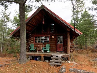 Echo Trail 35 Acres With Cabin  Ely, MN MLS# 5273004