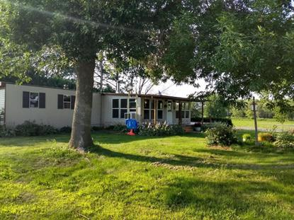 11659 Snake River Drive Pine City, MN MLS# 5273284