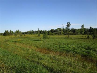 County Road 4  Alexandria, MN MLS# 5285145
