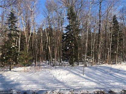 TBD Agency Narrows Drive NW Walker, MN MLS# 5349256