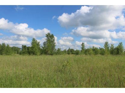 27XXX County Road 43  Wendell, MN MLS# 5518047