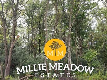 5027 Millie Road SW Rochester, MN MLS# 5542747