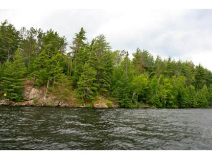 TBD Genor Trail  Orr, MN MLS# 5546276