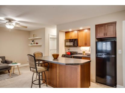 6309 York Avenue S Edina, MN MLS# 5571349