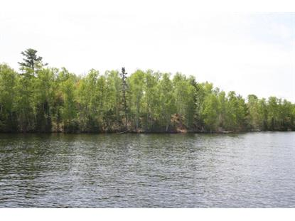TBD Hinsdale Island  Cook, MN MLS# 5573287