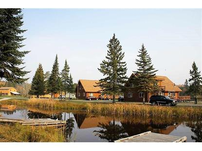 10418 Ash River Trail Orr, MN MLS# 5613062