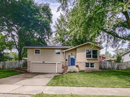 1431 29th Street NW Rochester, MN MLS# 5616574