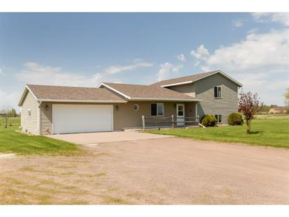 13995 Daisy Road NE Foley, MN MLS# 5616799
