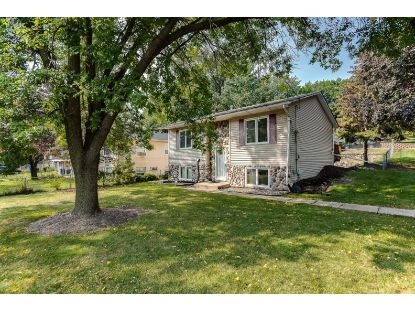 419 Van Dyke Street Saint Paul, MN MLS# 5630424