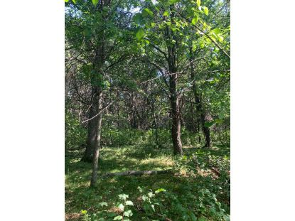 XXXX 145TH Avenue SE Clear Lake, MN MLS# 5649284