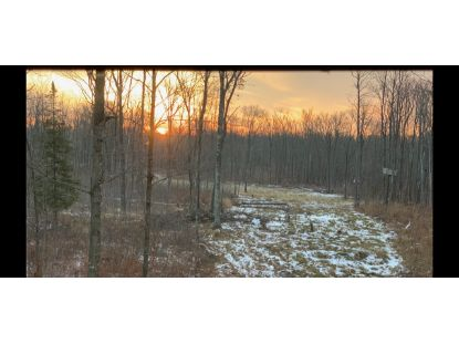 TBD Cuyuna Trail  Aitkin, MN MLS# 5660557