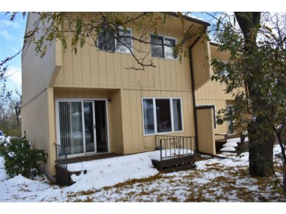 602 DARLING AVENUE  Alexandria, MN MLS# 5680282