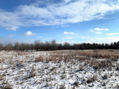 20XXX 176th Street NW Big Lake, MN MLS# 5689327