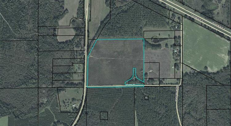 00 Sparks Rd., Monticello, FL 32344 - Image 1