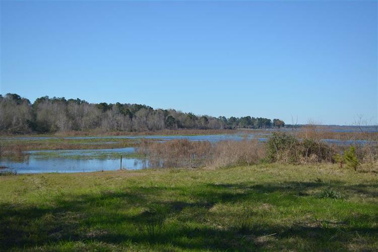 3.6acres Northshore, Tallahassee, FL 32312 - Image 1