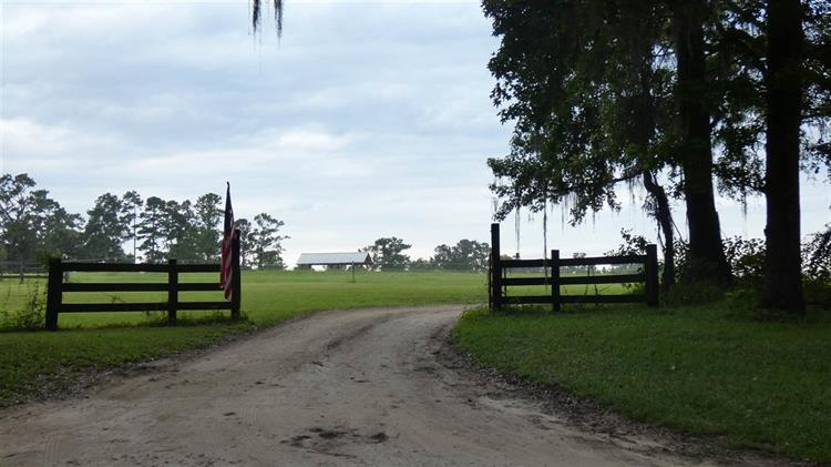 250 Painted Pony, Monticello, FL 32344 - Image 1