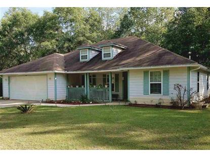 254 Hodges Riley Road  Attapulgus, GA MLS# 280525