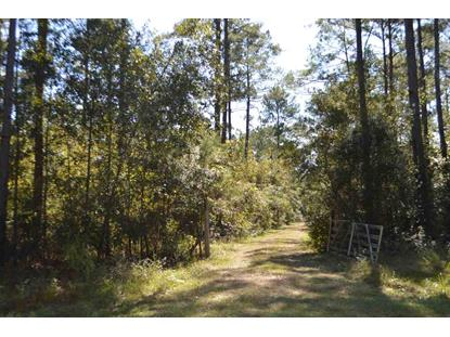 000 FAIRCLOTH ROAD  Cairo, GA MLS# 282288