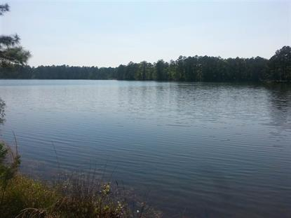 Lot 16 Stickland Rd/Crystal Lake  Attapulgus, GA MLS# 282958