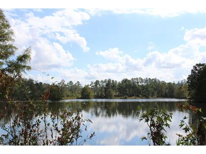 Vacant Lloyd Creek  Monticello, FL MLS# 301140