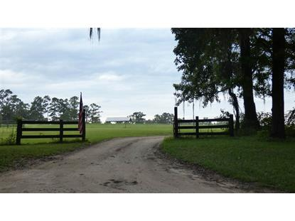 250 Painted Pony  Monticello, FL MLS# 320224