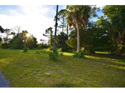 201 fourth  Steinhatchee, FL MLS# 320347