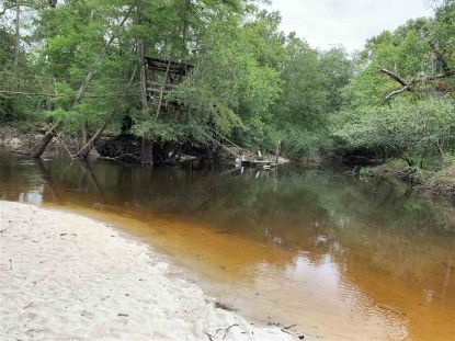 xxx River Run  Quitman, GA MLS# 321283