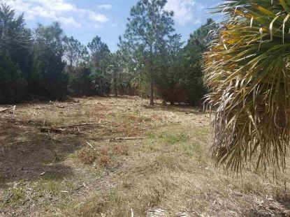 00 Egret to Osprey  Perry, FL MLS# 330112