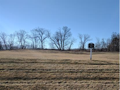 Lt1 Majestic Way W  Twin Lakes, WI MLS# 1513971