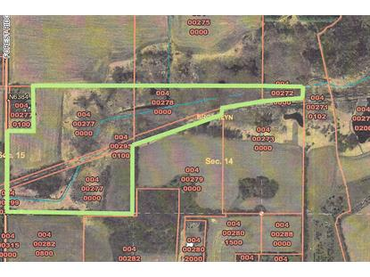 Forest Ridge Rd  Green Lake, WI MLS# 1568902
