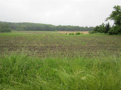 Lot 1 Pleasant Hill Rd  Hartford, WI MLS# 1643651