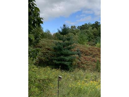 0000 County Line Rd  Elkhart Lake, WI MLS# 1659034