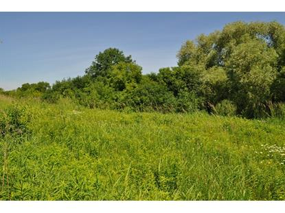Lt2 River Birch Dr  Mequon, WI MLS# 1659294