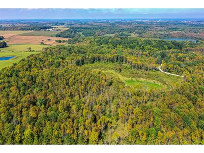 33acres Clover Rd  Manitowoc, WI MLS# 1660409