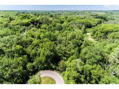 Lt17 Bridlewood Ct  Lake Geneva, WI MLS# 1673636