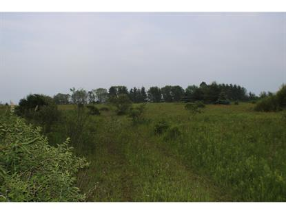 Lot 99 Lakeshore Rd  Kewaunee, WI MLS# 1675741