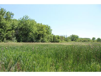 20 ACRES 110th Str  Twin Lakes, WI MLS# 1692597