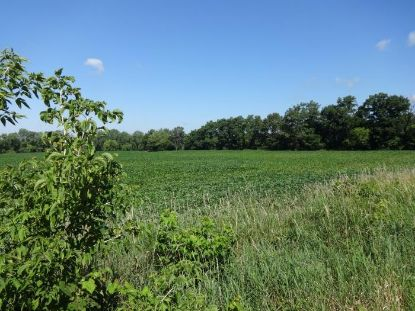 Lt2 Mealy Rd  Waterford, WI MLS# 1703214