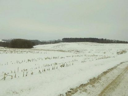 0000 Stump Ridge Rd  Viroqua, WI MLS# 1703719