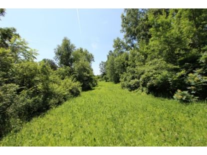 Lt0 Wilmot Rd  Genoa City, WI MLS# 1712684