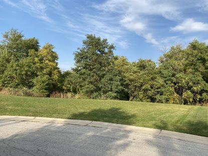 Lt31 Coach House Ct  Racine, WI MLS# 1713565