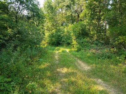 0 Middle Rd  Arcadia, WI MLS# 1717490