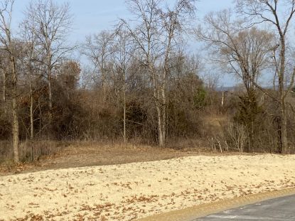 Lot 8 Hidden Prairie Dr  Holmen, WI MLS# 1719247