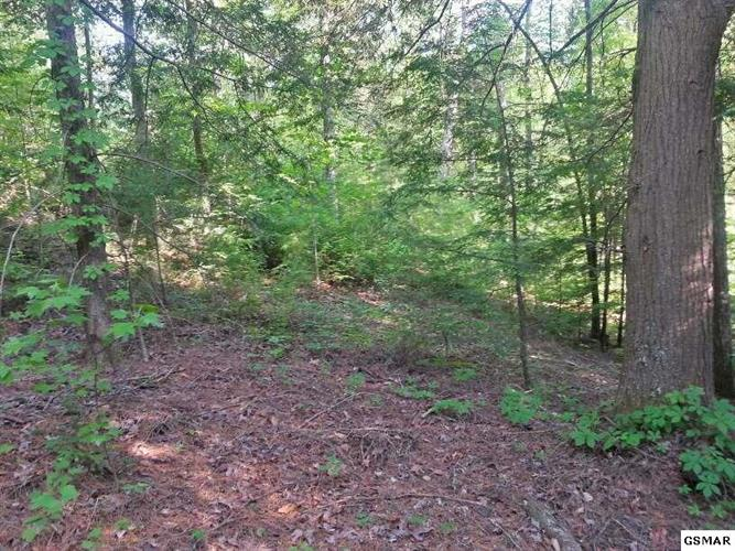 Lot 24 Double Oaks Way, Sevierville, TN 37862 - Image 1