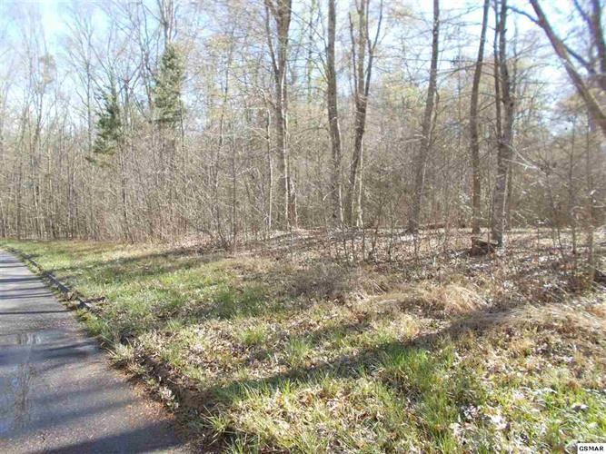 LOT 49 PLANTATION POINT DRIVE, Dandridge, TN 37725