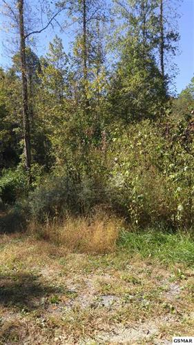 10.51 ac Champagne Dr, Cosby, TN 37722