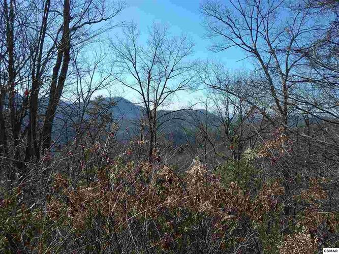 Lot 111E Settlers View Lane, Sevierville, TN 37862 - Image 1