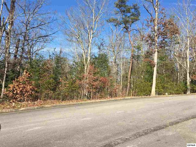 Lot 11 Zachary Thomas Lane, Sevierville, TN 37876