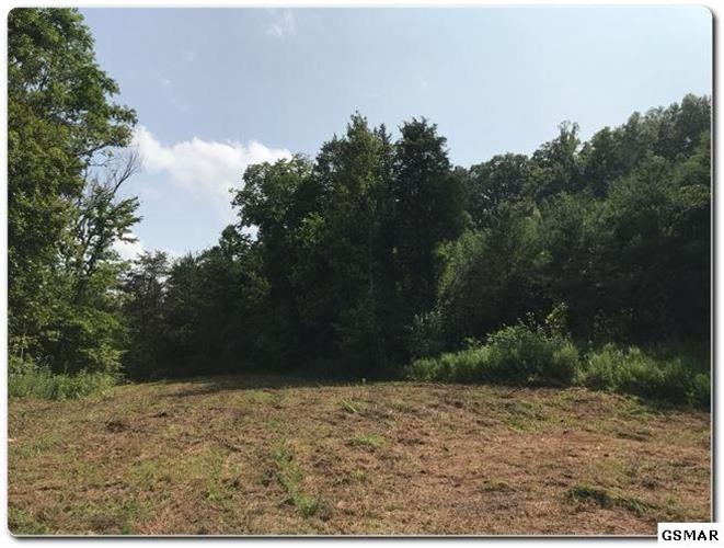 Lot Deep Spring Rd, Dandridge, TN 37725