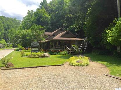 795 Buckhorn Road G Webb Gallery / Hemlock Village Gatlinburg, TN MLS# 204259